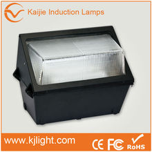 World best selling lvd outdoor wall pack lamp, induction lamp outdoor wall lamp For trade Assurance