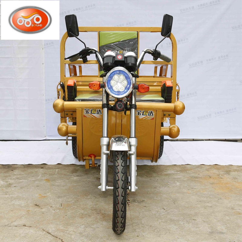 1000W high power 18 pipes large cargo size adult bajaj India tricycle
