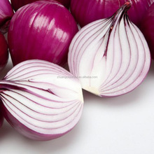 2018 wholesale fresh red onion