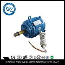 Professional superior materials oem sensored motor
