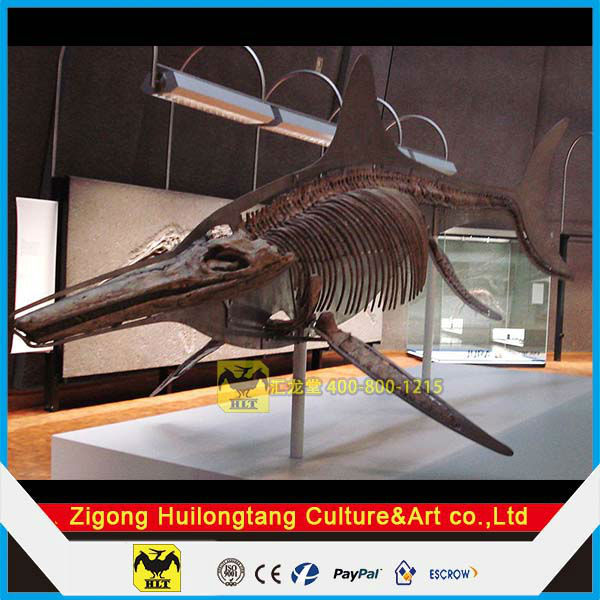 Animal skeleton replica for outdoor park shark fossil