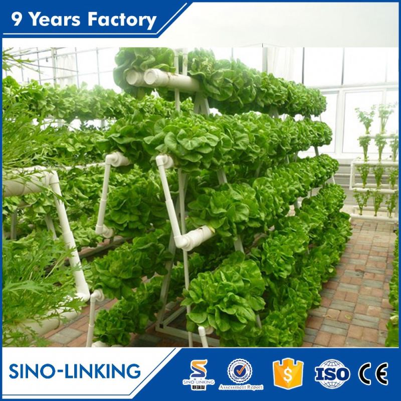 Low price prefabricated greenhouse ebb and flow hydroponic systems for flower