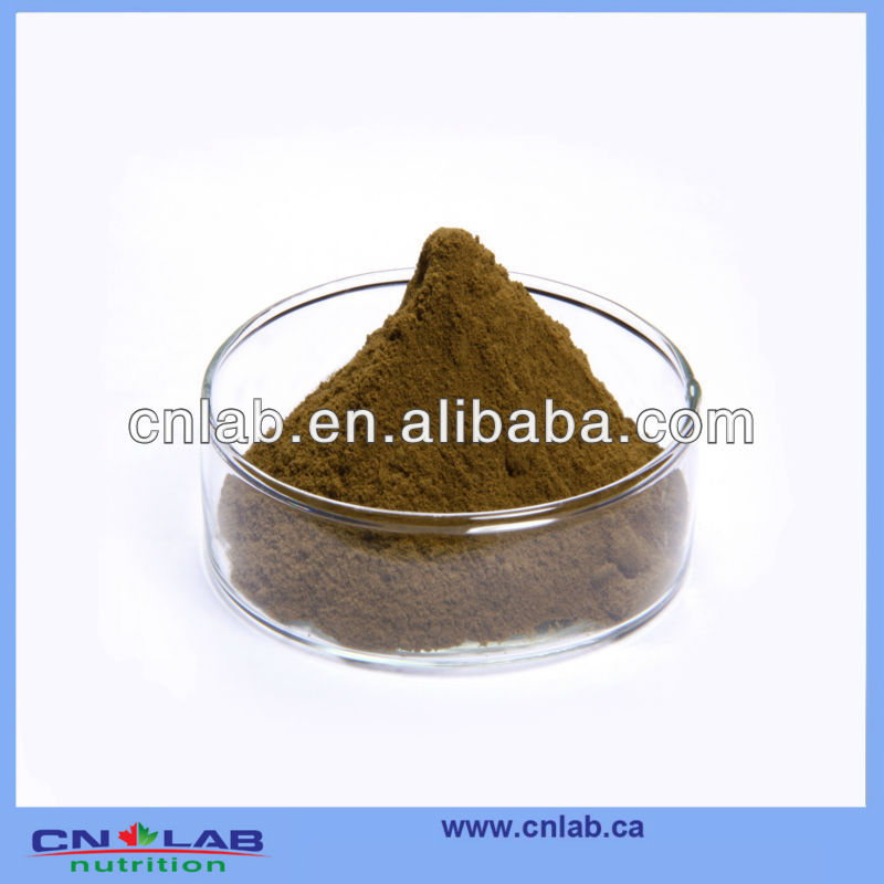 KOSHER HACCP GMP Brown Seaweed Extract Powder