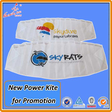 Kaixuan Kite factory Advertising Dual Line Power Kite