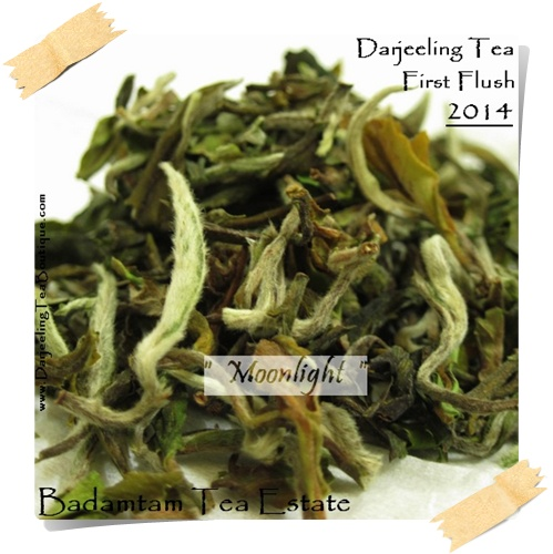 Darjeeling First Flush Tea 2014, Badamtam, Moonlight