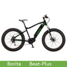 Borita Beat-Plus Suspension elecric mountain bike 8-speed Gear electric bicycle with mid motor