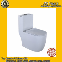 hot selling toilet seat toilet paper roughing in Siphonic wholesale factory price toto sanitary ware