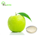 Lose weight Green apple extract powder 10:1 slimming tea from HACCP Factory