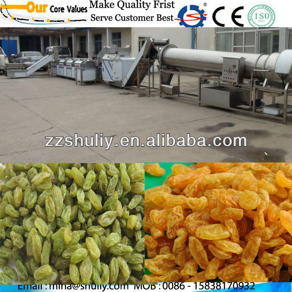 raisin processing line 0086-15838170932