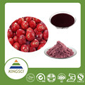 cGMP Manufacturer Supply Natural Red Bilberry Extract Anthocyanidins Powder Very Low Pesticide KS-08