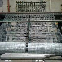 "PVC/galvanized 1"" 1/2"" 3/4"" hexagonal wire mesh/insulution mesh chicken wire (anping factory)"