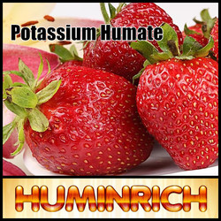 Crystal/Granular 90% Organic Potassium Humate/Humic Acid Water Soluble For Agriculture
