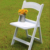factory wholesale padded folding chair wedding plastic resin for outdoor