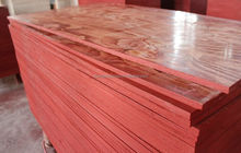 12,15,18mm Thin film faced plywood eucalyptus wood concrete form lumber prices lowes