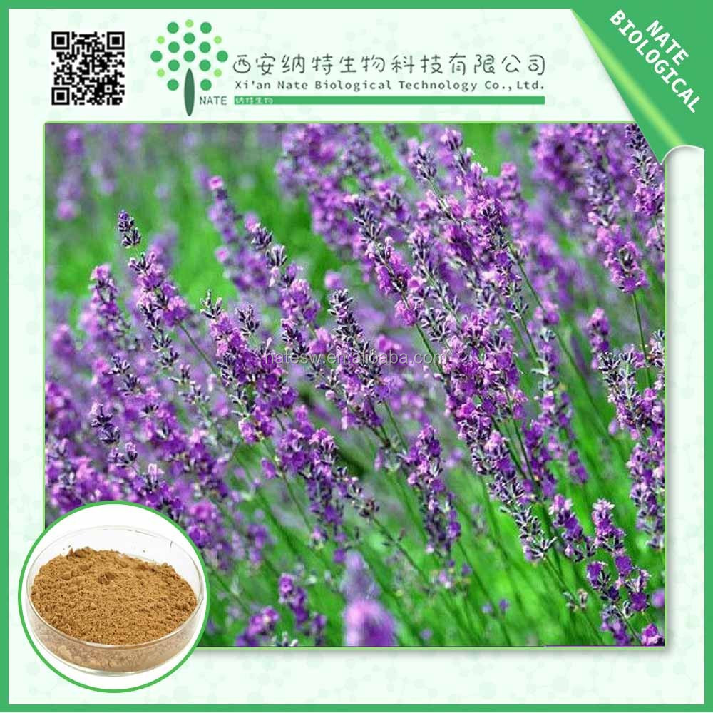 Antioxidants plant extract Rosemary extract ursolic acid powder Carnosic Acid Powder and Rosmarinic Acid Powder