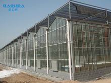 BaoLiDa large multi span tempered glass greenhose hot-dip galvanized steel tube structure mushroom greenhouse