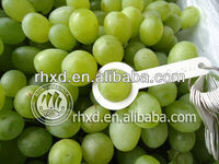 fresh green grapes varieties table grapes
