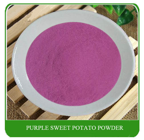 100% Natural cereal baking food additive / Instant purple sweet potato powder for pie
