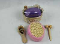 Professional luxury bath spa gift set/cleaning brush set