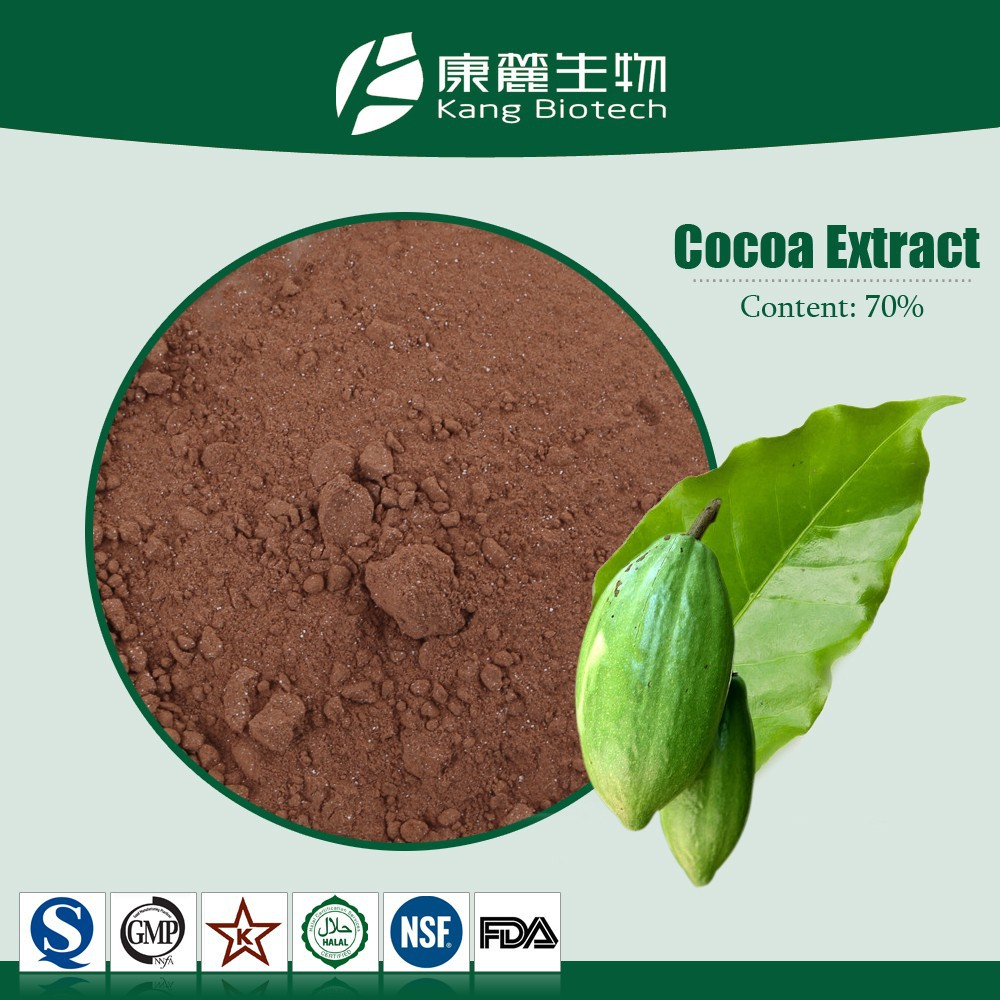 100% pure cacao beans extract, 100% natural cocao powder