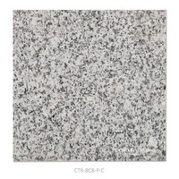 Factory Price Chinese White Granite Polished Surface Outdoor Floor