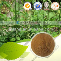 Triterpene Glycosides Black Cohosh extract powder