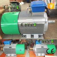 25KW 100RPM Permanent magnet generator PMG three phase AC synchronous alternator