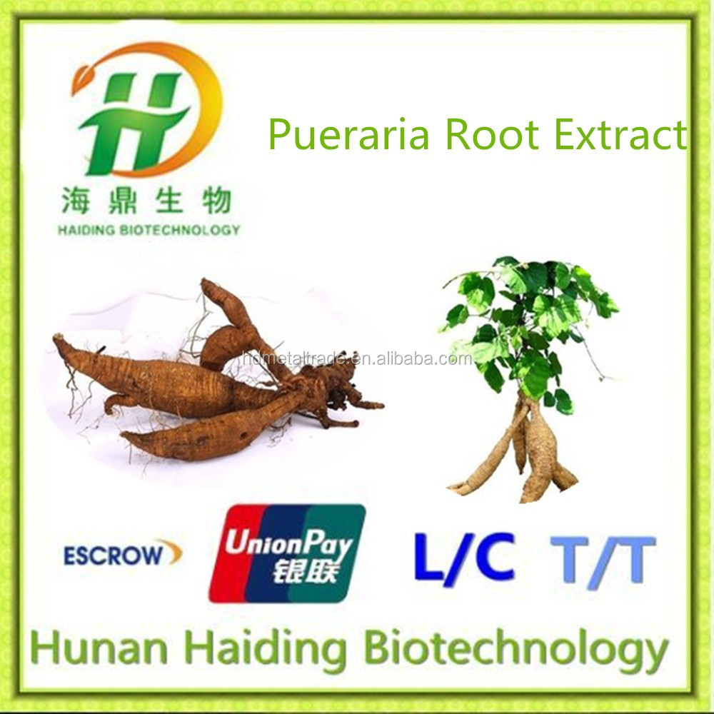 100% Pure Pueraria Lobata Extracts from GMP Factory