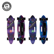 New Species electric skateboard fast wholesale canadian maple skateboard decks