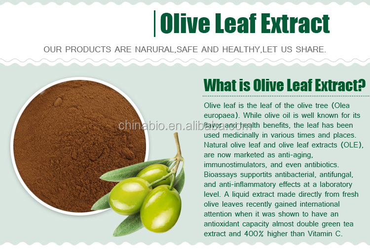 GMP Factory Supply High Quality Oleuropein 20 40 Olive Leaf Extract Powder in Bulk