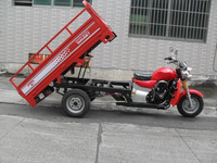 200cc Water Cooled Engine Tricycle Cargo Motorcycle