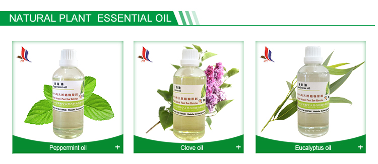 Factory Bulk 100% Pure Citronella Oil with Best Price