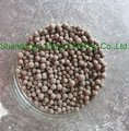 Fertilizer with cheapest price