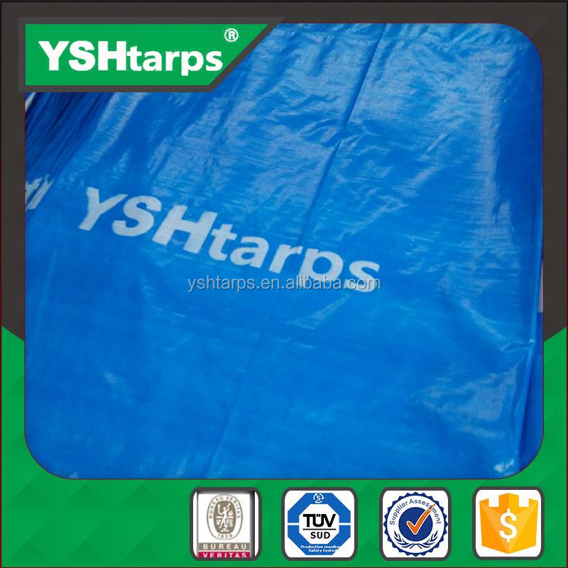 China Supplier bache tarpaulin pe plastic sheet