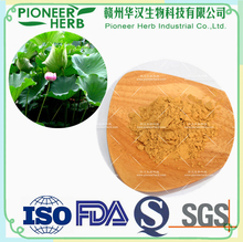 slimming supplement Instant Lotus Leaf Extract Powder widely used as herbal tea