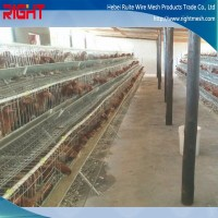 Different Type Chicken Cages For Designs Poultry House In Kenya Farm