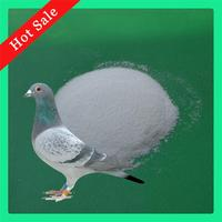 Pigeon Racing Supplies Antibiotics Names 2% Oxibendazole Powder