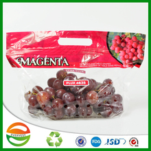 plastic fruit package bag/plastic packing bag for fruit/fruit protection bag