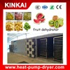 KINKAI dried small fruit drying machine/fruit dryer with drying chamber