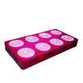 ZNET8 LED Grow Lights High Power 600W HPS Replacement Full Spectrum LED Grow Light for Greenhouse