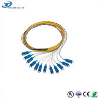 SC/UPC PC Singlemode 0.9mm 9/125 Fiber Optic Pigtail 12 core fiber optic patch cable