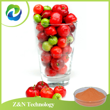 Organic acerola cherry powder with natural Vitamin C / VC