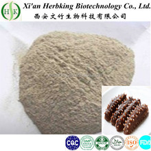 Professional Manufacturer organic Sea Cucumber powder extract