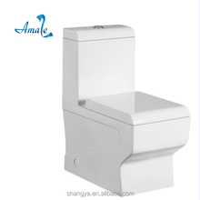 Bathroom Luxury Design toilet bowl cleaner with factory price bathroom toilet bathroom closet with C.E. Certificate