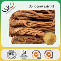 Alibaba supplier hot Chinese herb medicine 100% natural angelica sinensis extract 1% ligustilides,angelicae sinensis powder