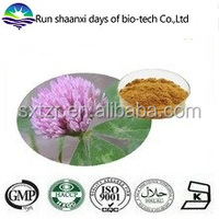 FREE Sample Natural Red Clover Dry Extract Trifolium Pratense Extract Powder