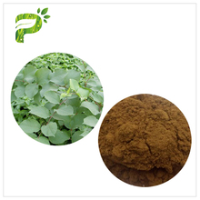 Plant Extract Anti Aging 99% Resveratrol Powder Giant Knotweed Extract