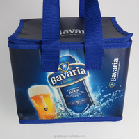 Promotion beach picnic bag pp woven insulated beer bottle cooler bag