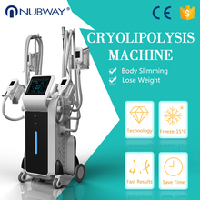 New Arrival Cryolipolysis Slimming Machine fat freezing shape cool slimming machine with 4 cryo handles