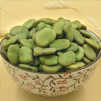 Green Broad Beans